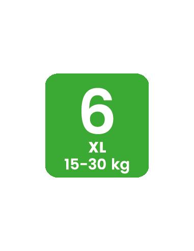 Caja 20 muestras Pingo Talla 6